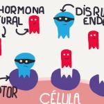 disruptores-endocrinos-1180x664