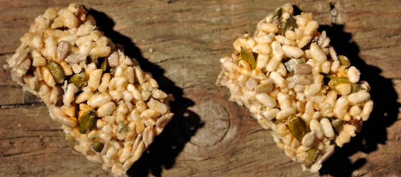 Postres deliciosos con semillas y frutos secos