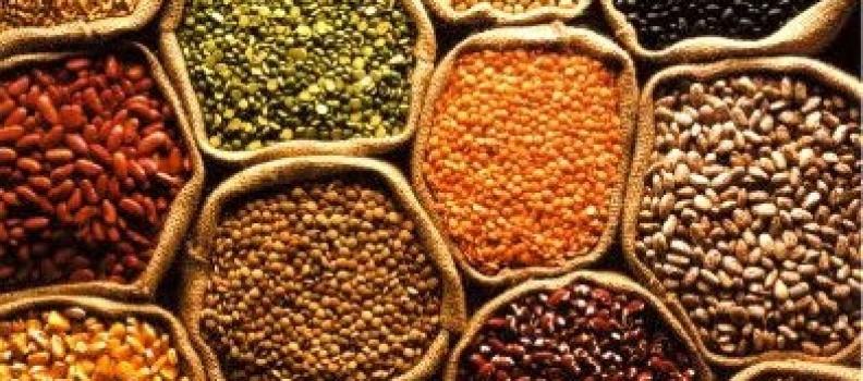Cómo cocinar las proteínas vegetales