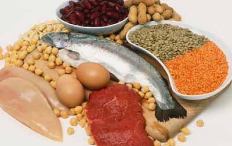 ¿Qué tipo de proteína es la más saludable?