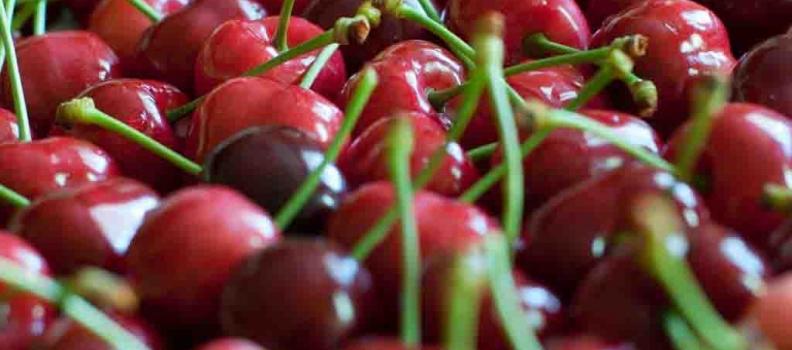 El poder diurético de los rabillos de las cerezas