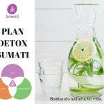 Detox - Sumati