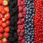 frutos rojos - sumati
