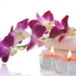 Terapia Floral - Sumati