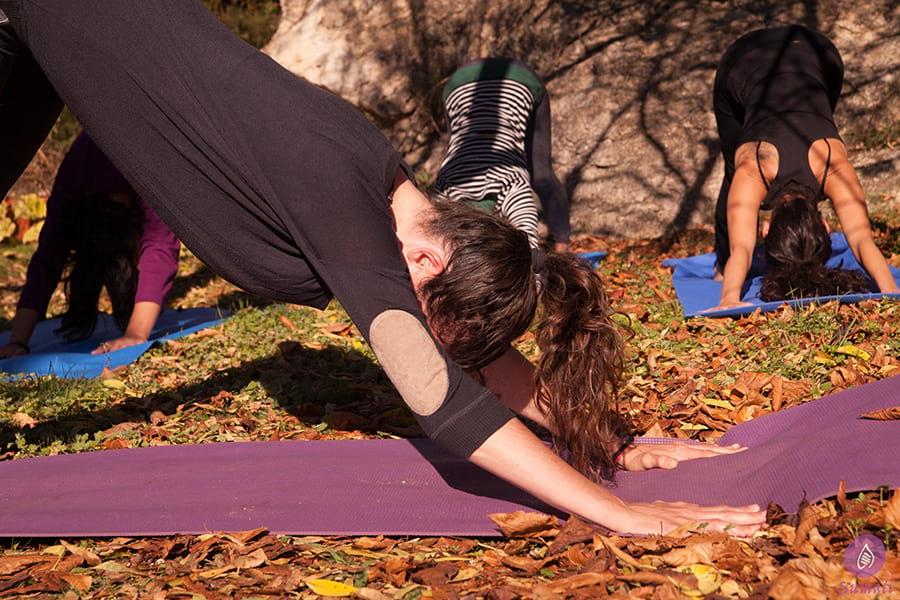 Clases de Hatha Yoga en grupo - Sumati