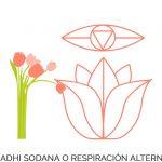 Nadhi sodana o Respiración alterna - Pranayama - Tu relación con la comida habla de ti - Sumati